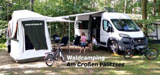 Naturcamping am Großen Pälitzsee