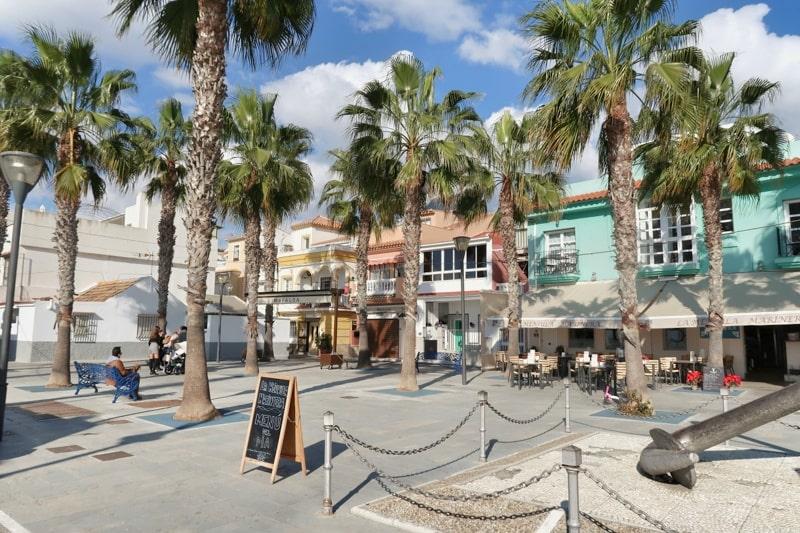 Spanien mit dem Wohnmobil Palmen